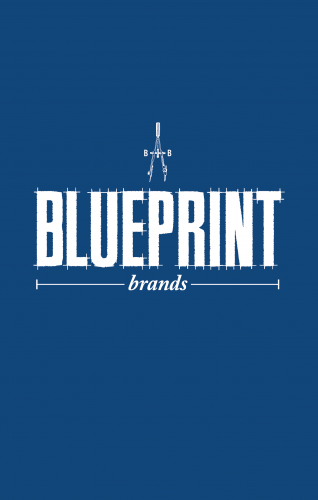 Picture of Blueprint logo